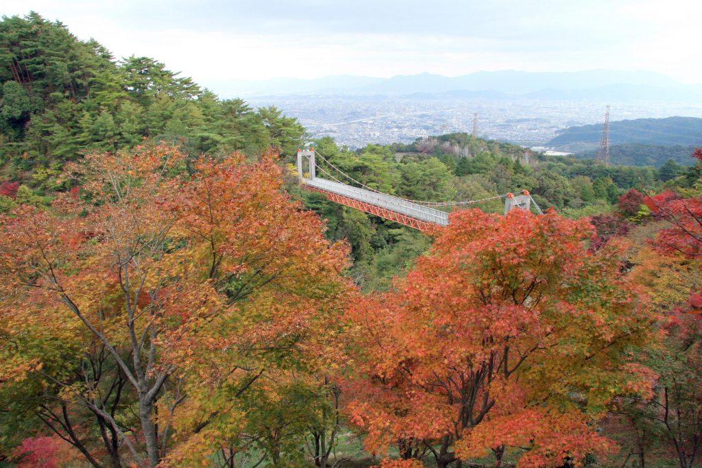aburayama_autumn